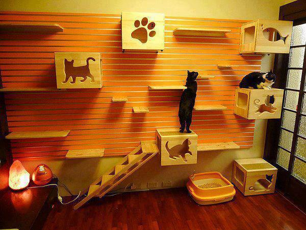 Игровая комната для кошек